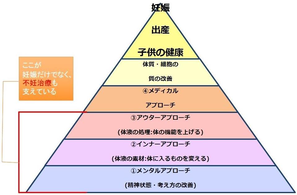 妊活ピラミッド